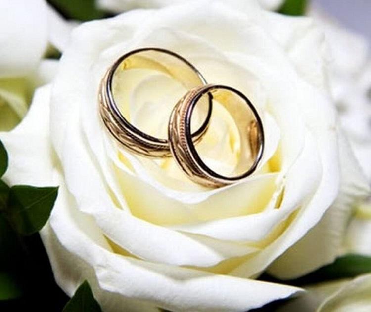Кольца обручальные, белая роза