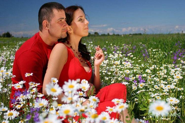 Влюблённая пара, поле, цветы, лето