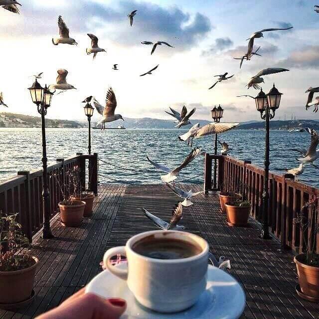 Кофе на причале